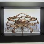 Kepiting 3D Solid Frame