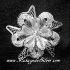 Nerium Oleander Silver